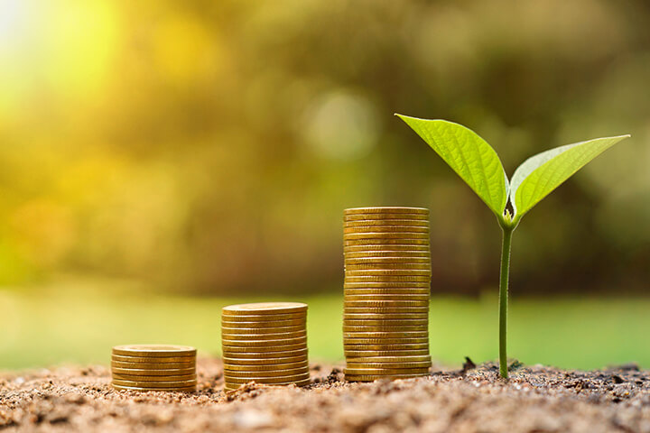 esg investing environment, stacked coins in nature