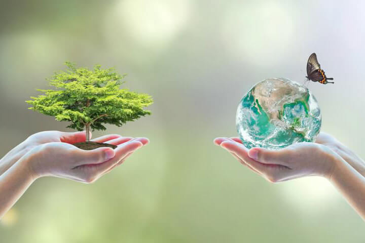 Core ESG Investing, nature scene hands holding a tree and the earth